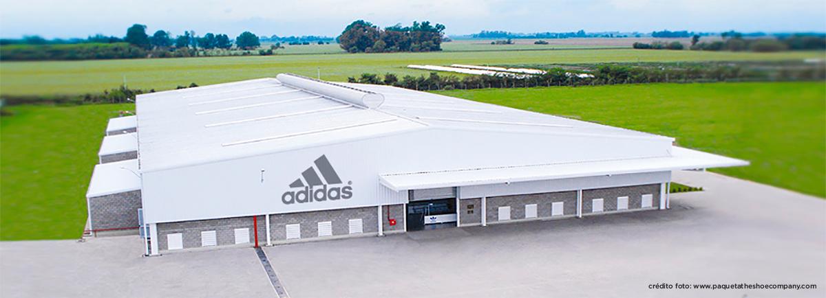 6da3cedd Más producción y empleo en una fábrica de zapatillas de Chivilcoy | De  Chivilcoy
