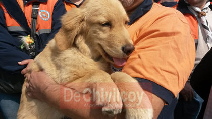 Defensa Civil cuenta con un perro de búsqueda y rescate de personas vivas