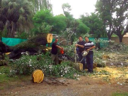 Obras Públicas trabajó en zonas afectadas por el mal tiempo
