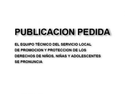 Publicación pedida: Equipo Técnico del Servicio Local